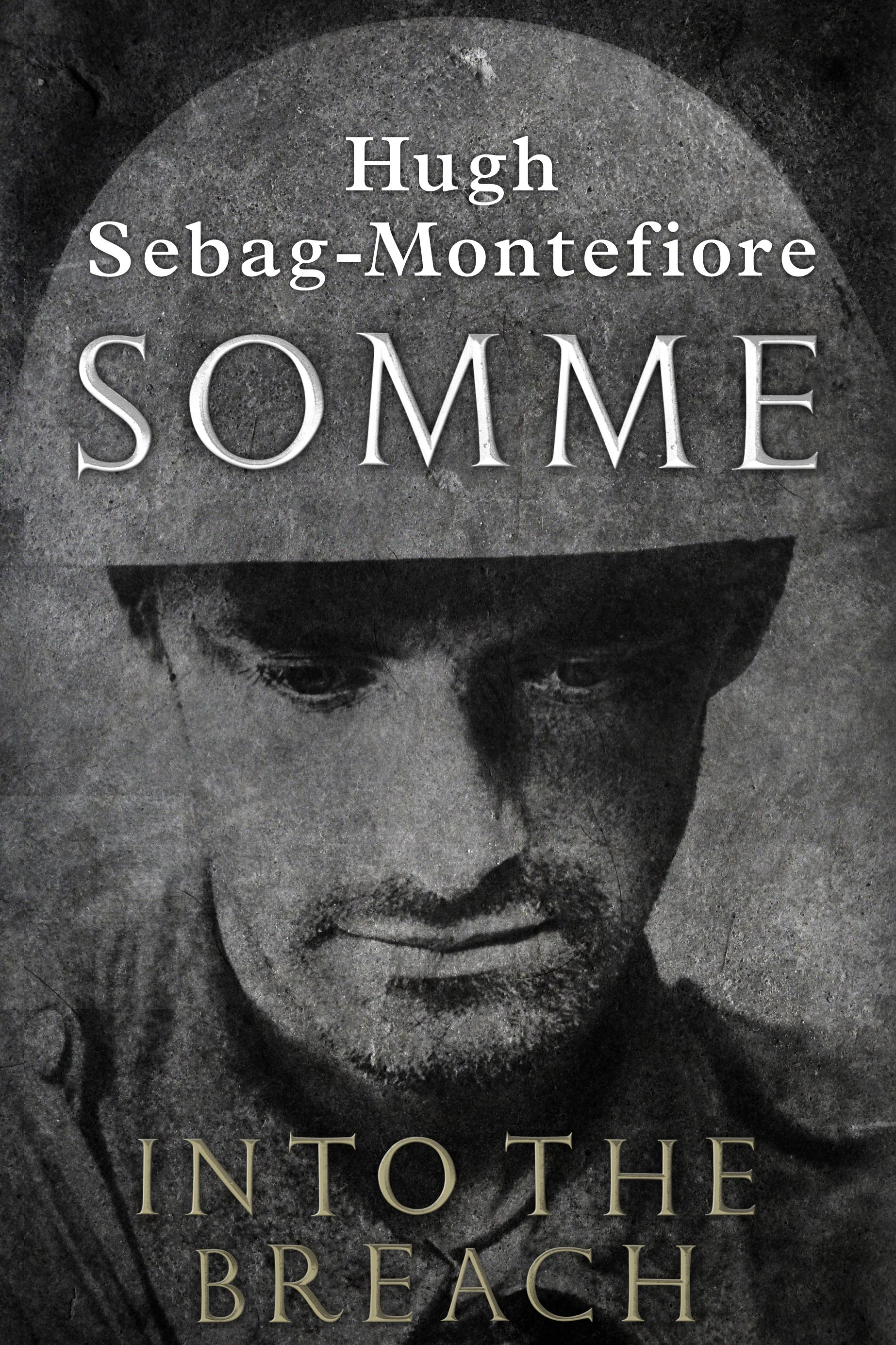 Books Similar to Somme: Into the Breach
